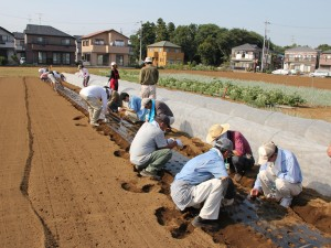 4援農ボランティア